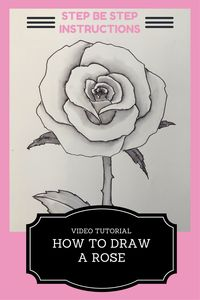 how to draw a rose flower video
