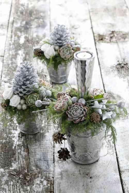 décoration de Noël originale en plantes succulentes