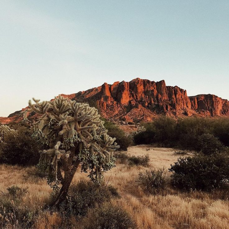 Urban Outfitters Arizona (@uoarizona) • Instagram photos and videos