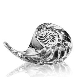 Steuben Glass: Nautilus Shell