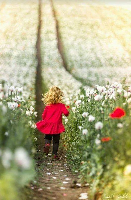 A imagem pode conter: uma ou mais pessoas, planta, criança, árvore, flor, atividades ao ar livre e natureza
