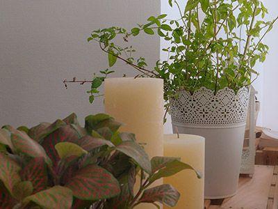 plantes / cache-pot / photophore / blanc / Ikéa / bougie / habitat / décoration / simple / bois / cagette / tête de lit / récup / +architecte +décorateur +intérieur +Lyon +Tiphaine Thomas / http://www.skea.fr/agence/