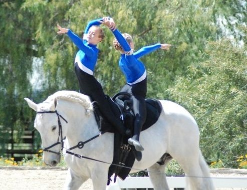 Equestrian vaulting is an exciting competitive team sport combining the spirits of gymnastics and dance on the back of a moving horse.