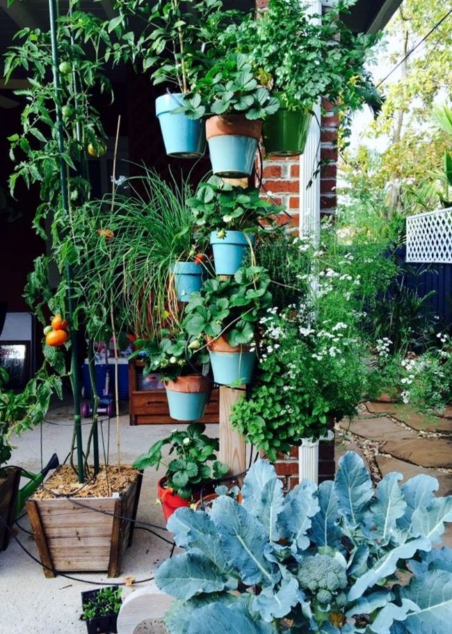 118 best images about vertical small space garden design with flower pots on pinterest - Small space container gardens design ...