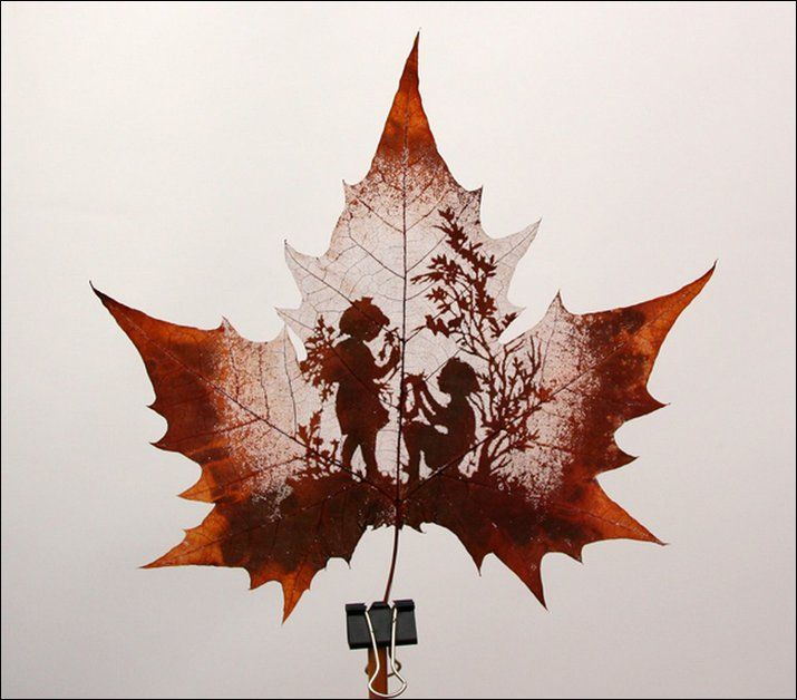 Leaf Carving: Art that comes with Autumn - so pretty!