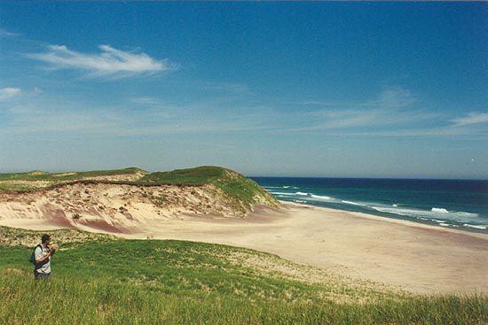 sable island report
