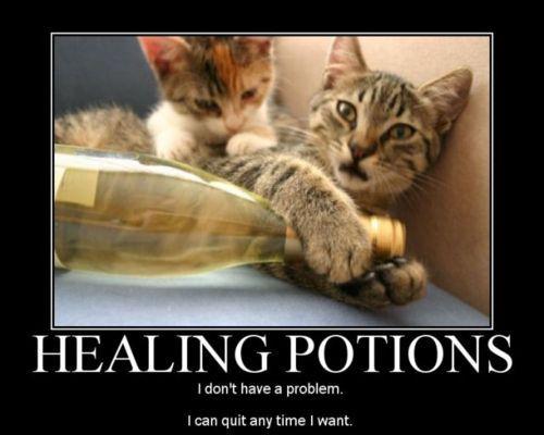 cat grooming pittsburgh
