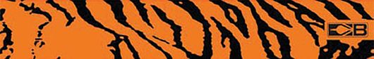"BOHNING CO LTD Bohning 7"""" Standard Printed Arrow Wrap Orange Tiger, DZ"