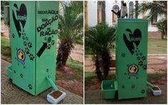 Estudante cria máquina que distribui água e ração para cães de rua em SP