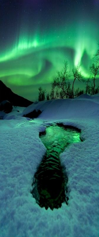 Aurora Borealis, Evenes, Norway