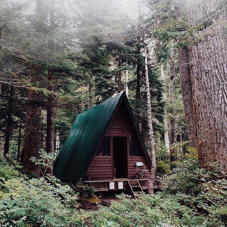 Small spaces, big forest views.  #getoutdoors #upknorth Weekend cabin near Elsay Lake, Mt. Seymour, BC. Stunning shot by @bennnnnnnngie