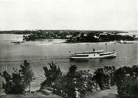 View of South Perth from King's Park, pre-Freeway/Narrows Bridge, early 1900s.