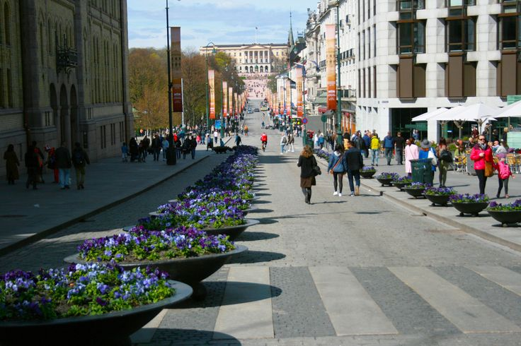 Karl Johan's gate is the main shopping street in the city center, with clothing stores, souvenirs, hotels, bars, restaurants and shopping malls.