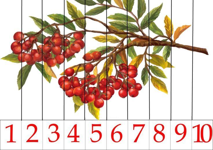 Математические пазлы