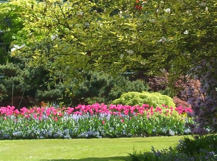 Flower border in Stanley Park