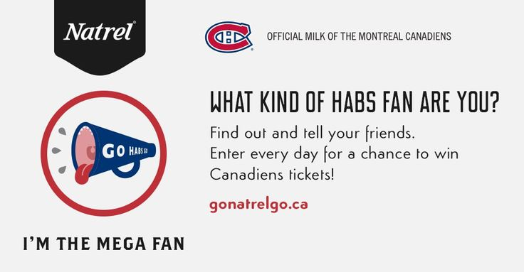 I'm the Mega Fan. I tend to jump out of my seat so often that nobody near me can safely eat a hotdog. No matter where I go, I want people to know I'm the biggest Habs fan on the planet.