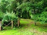 » Il bosco - Tenuta Valle Cento Event & Wedding location www.tenutavallecento.com