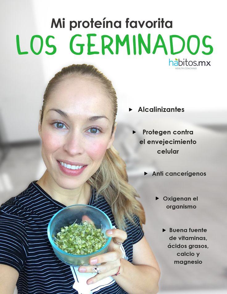 Hábitos Health Coaching |    Mi proteína favorita LOS GERMINADOS
