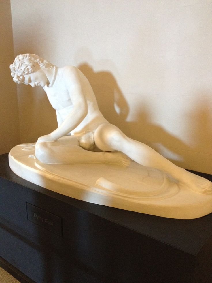 Dying gaul statue in AKL museum.