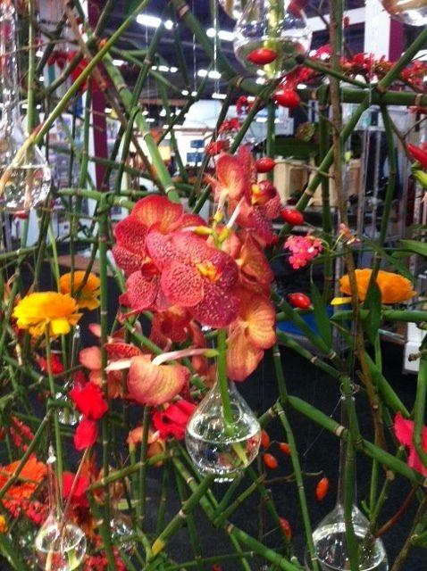 Stand B&G de Mooij op de FloraHolland Trade Fair. Standnummer 17:8