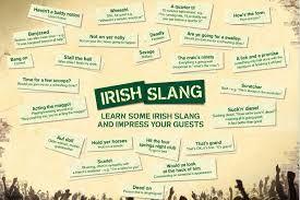 Irish slang   Thurles:  Un programa de Inmersión con chicas y chicos irlandeses.Con talleres de teatro, ecología y medio natural.    Thurles es una ciudad vibrante y próspera que cuenta con una población de 7.700 habitantes. Está situada en el norte de Tipperary.    #WeLoveBS #inglés #idiomas #Irlanda #Ireland #Thurles