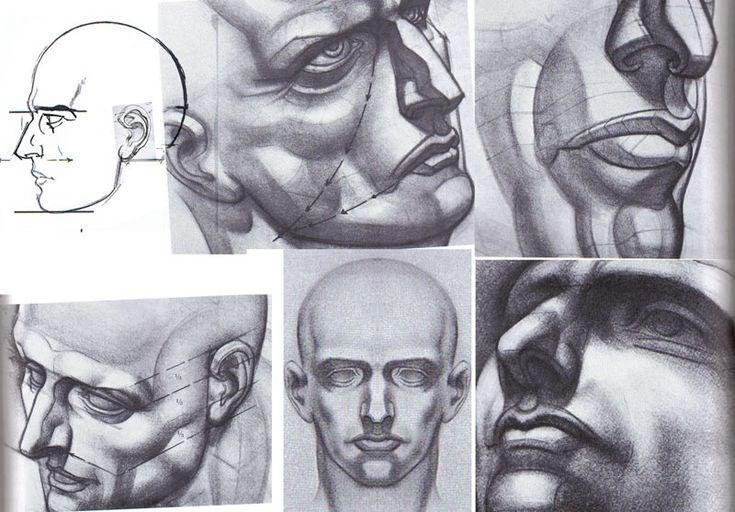 Burne Hogarth Drawing The Human Head Pdf Merger Summerstaff