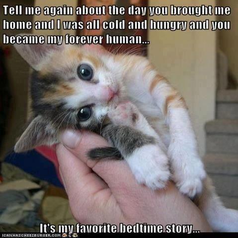 Aweeee, so true. I love this...