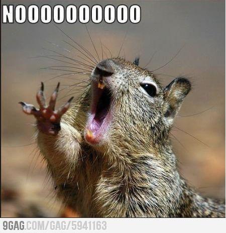 When teacher says hes gonna erase the blackboard