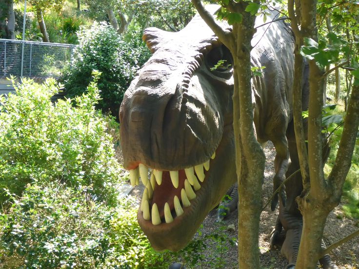 Blackgang Chine has some really scary moving  dinosaurs which even made the grownups jump!  New for 2014.