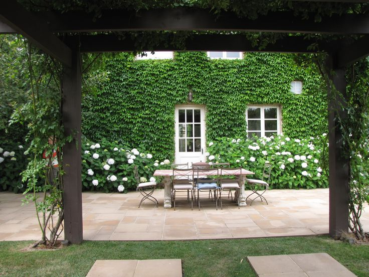 pergola covered with roses and ornamental grape beds of