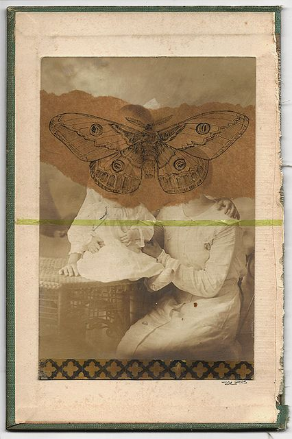 The Moth Sisters by shelley lane, via Flickr