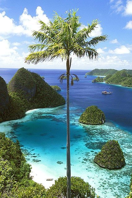 Wayag Islands - Indonesia -- Oh my gosh! A photo no artist could paint! It is beyond words to describe all the delightful mesmerizing colors & scenic components!