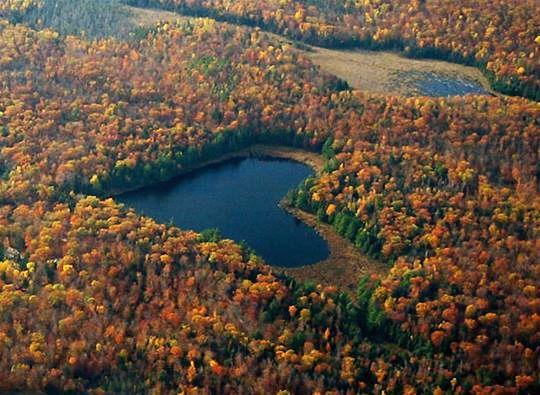 Heart Lake in the Autumn, Brampton, Ontario