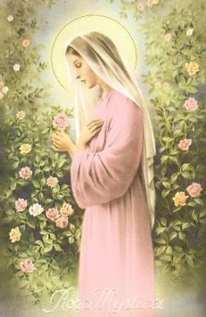 Our Lady Rosa Mystica