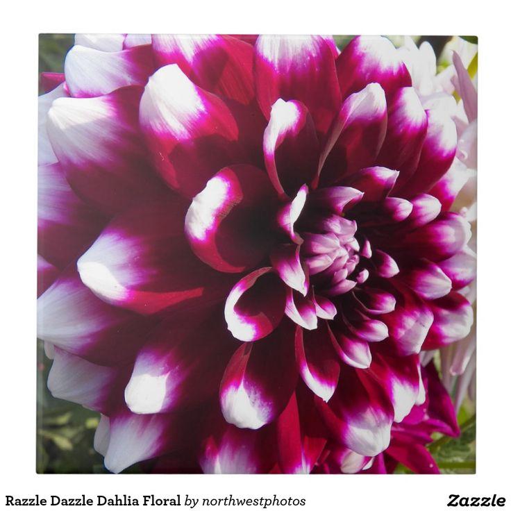 Razzle Dazzle Dahlia Floral Tile