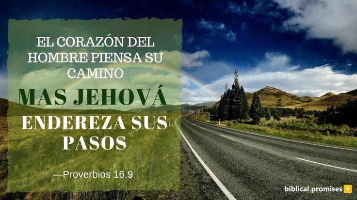 """""""El corazón del hombre piensa su camino: Mas Jehová endereza sus pasos."""" —Proverbios 16.9"""