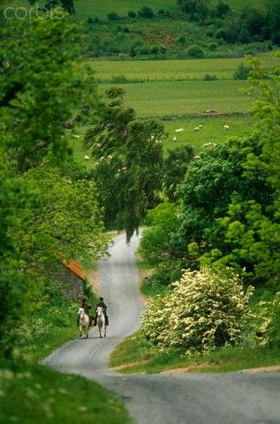 Horseriding along a country lane. Harbottle, Northumberland, England