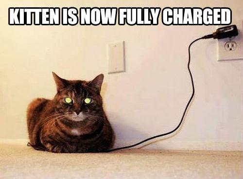 Charging kitty...