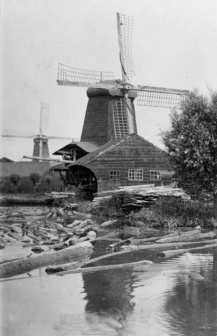 "Windmills ""De Duinen"" and ""Windhond"" on Noordendijk, 1905"