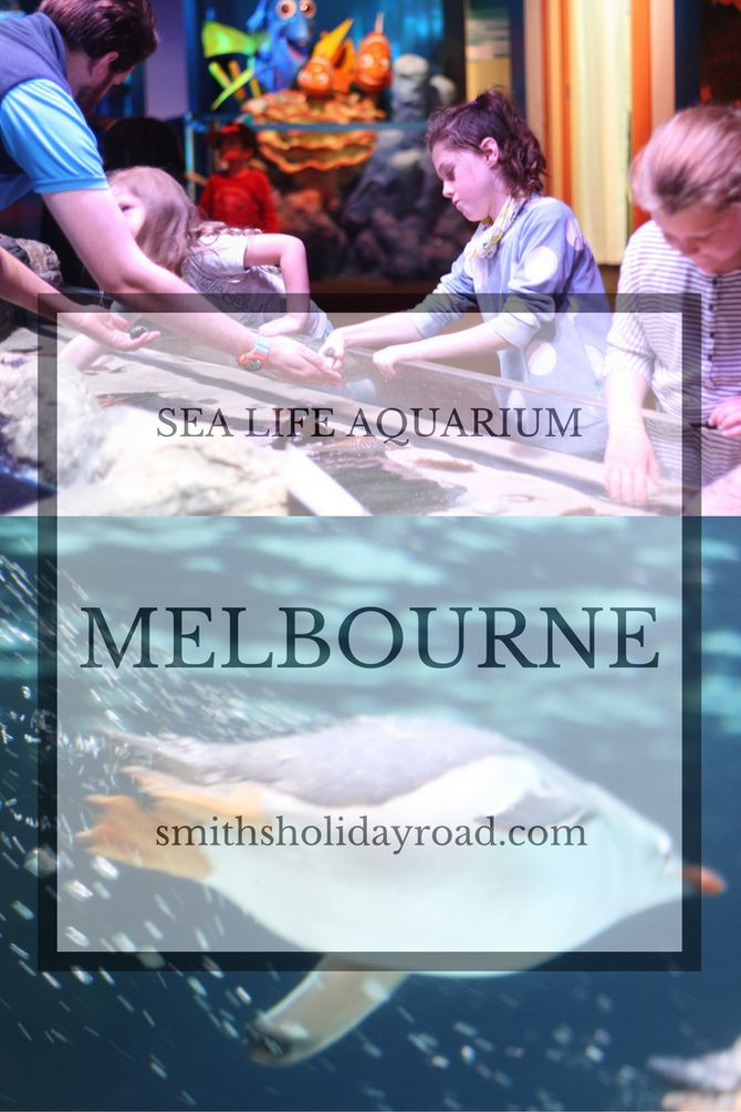 SEA LIFE Melbourne Aquarium. - Smiths Holiday Road