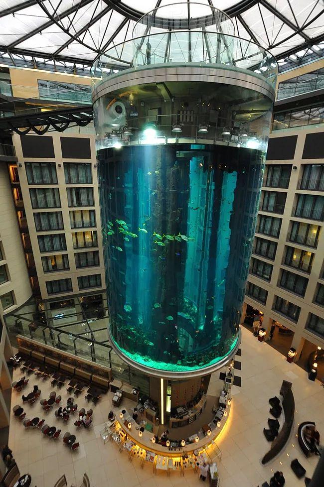 (Aqua Dom Aquarium) Radisson Blu Hotel Berlin Almanya / #Maximiles