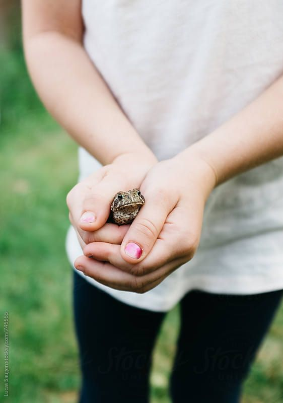 16da9a936fd9d Young girl holding a frog in her hands. by Lucas Saugen for Stocksy ...