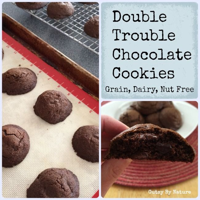 Made these earlier today. Perfect for a sweet tooth and so easy. Double Trouble Paleo Chocolate Cookies (Grain Free, Dairy Free, Nut Free) - Gutsy By Nature gutsybynature.com