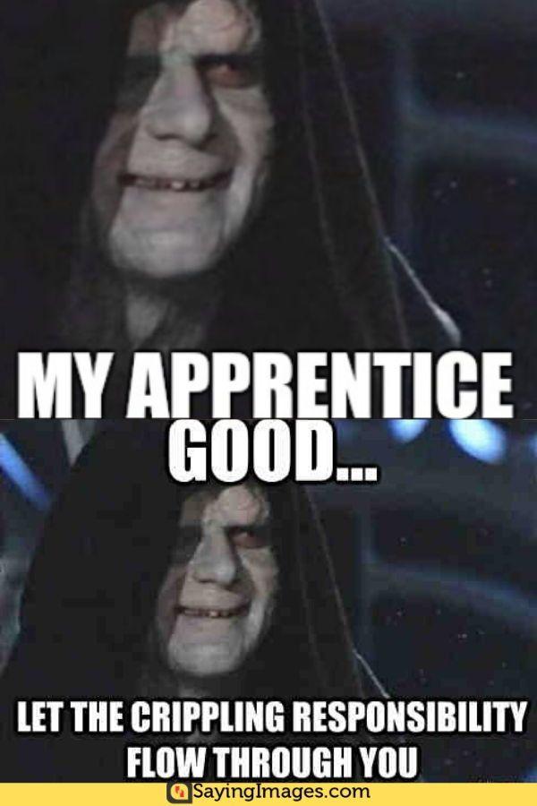Emperor Palpatine Laugh : emperor, palpatine, laugh, Emperor, Palpatine, Memes, That'll, Laugh, SayingImages.com, Palpatine,, Memes,