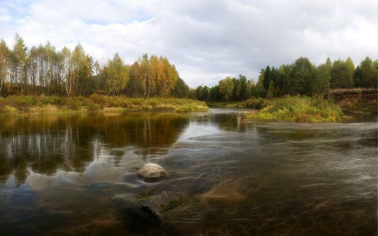 Jesień, Rzeka, Drzewa, Trawy, Kamień