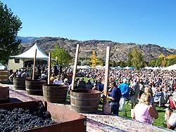 Festival of the Grape, Oliver, BC