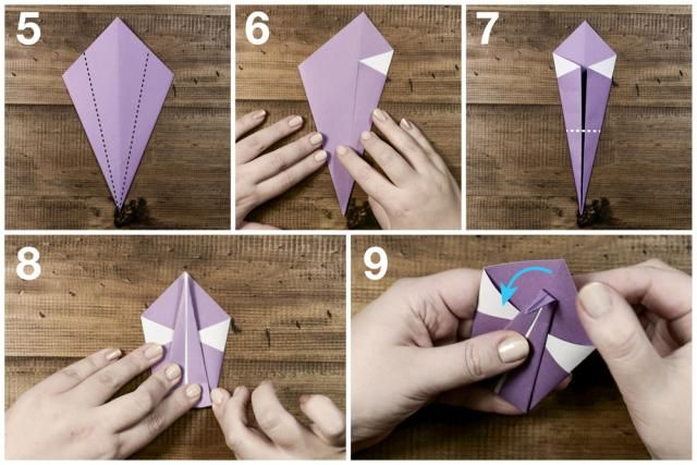 How to make an easy Origami Swan!: Easy Origami Swan Tutorial- Step 2