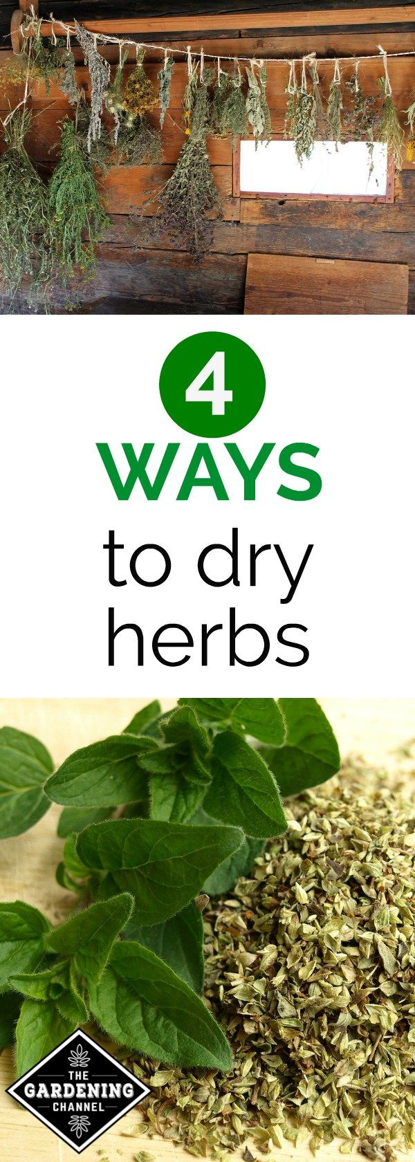 Learn how you can preserve herbs you've grown in the herb garden. Learn these four ways to dry herbs.