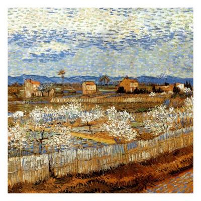La Plaine De La Crau Avec Pêchers En Fleurs - Van Gogh (art.com)
