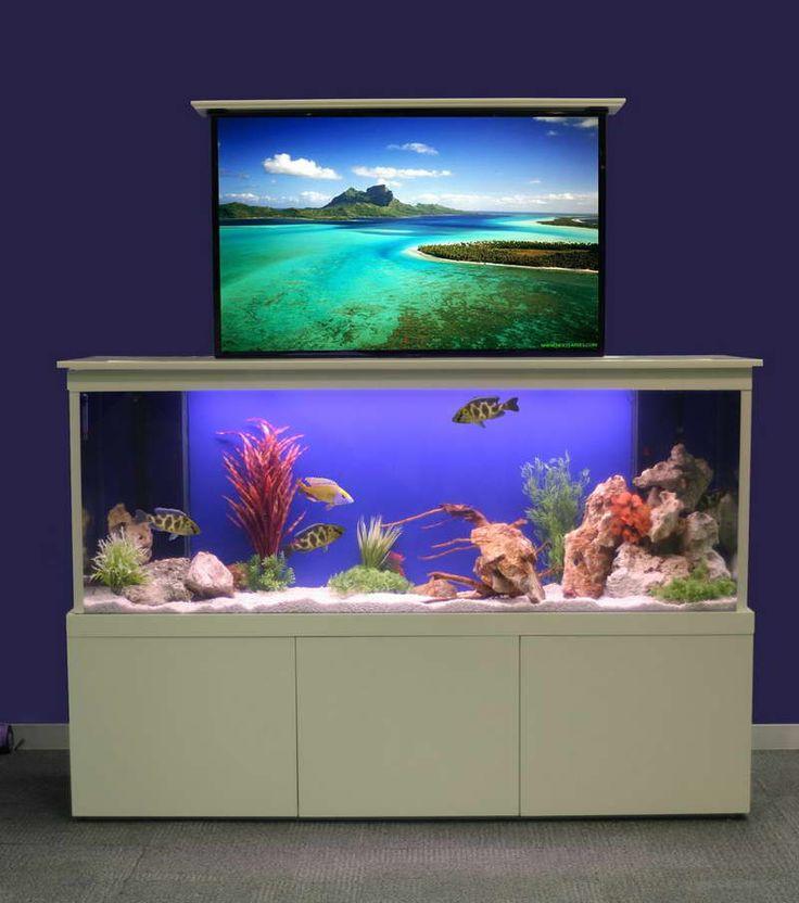 Home Aquarium Decor Design Ideas Saltwater